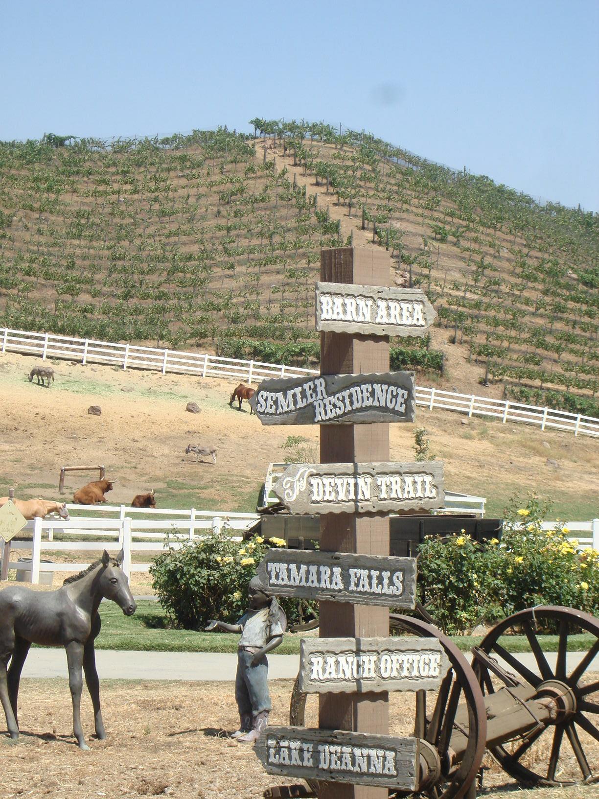 Welcome to Saddlerock