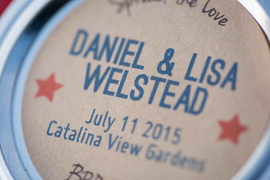 The Wedding of Lisa and Daniel